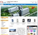 深圳市日业电气有限公司