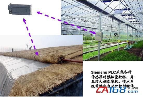 生态农场大棚信息化背景为:某一农场位于华北地区,与当地农户合作,架设了11个反季节蔬菜栽种大棚(如图一所示),意在寒冬季节,仍能为本地和更北方的地区供应新鲜蔬菜。大棚中铺设了温度传感器、湿度传感器等一系列先进的环境数据感知监测仪器,能够实时反映大棚中的各种环境参数,并且采集到大棚中的可编程逻辑控制器(本文以Siemens PLC为例)中(如图二所示)。同时,为了采集记录大棚最详实的作物生长过程各环节所需要的环境数据(土壤、温度、湿度等),为作物的反季节栽种提供更科学的依据,农场也架设了大棚管理中心,通