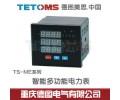 多功能电力表TS-ME96P4