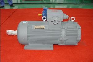 佳木斯YBZPE系列起重用隔爆型電磁制動變頻調速三相異步電動機