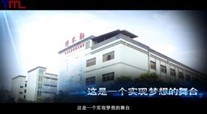 东莞特米勒电子有限公司