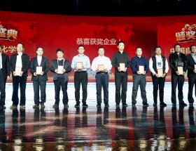 """台达荣获""""2017中国自动化学会企业创新奖"""""""