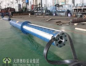 天津奥特井用潜水泵_一泵多用_效率高_省时省力