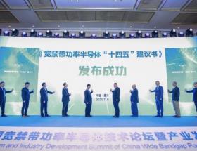 2020年中国宽禁带半导体技术论坛暨产业发展峰会在南湖举行